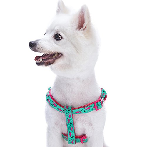 Blueberry Pet Step-in Pink Flamingo on Light Emerald Dog Harness, Chest Girth 20 - 26, Medium, Adjustable Harnesses for Dogs