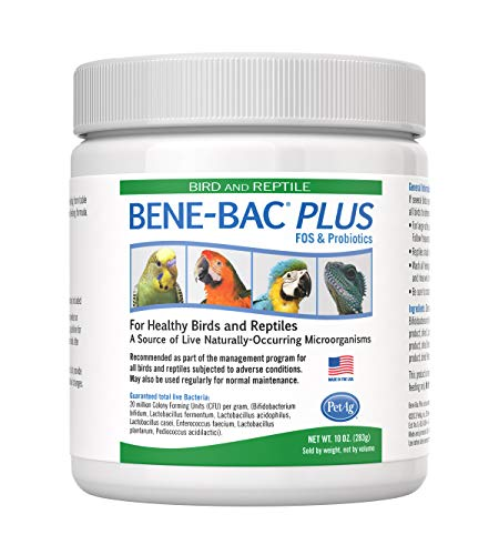 PetAg Bird & Reptile Bene-Bac Plus FOS Prebiotic & Probiotic Powder