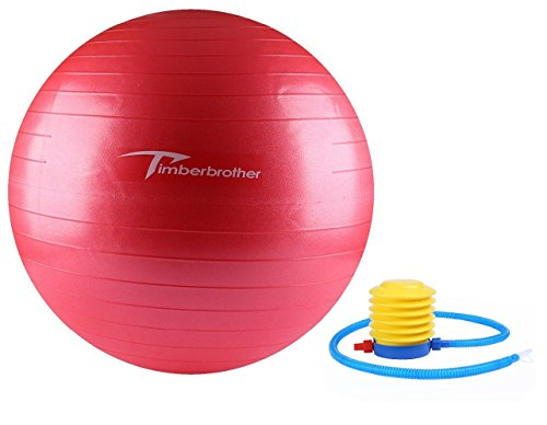 Timberbrother Exercise Stability Ball / Fitness Ball / Balance Ball with Pump (Pink, 65cm)