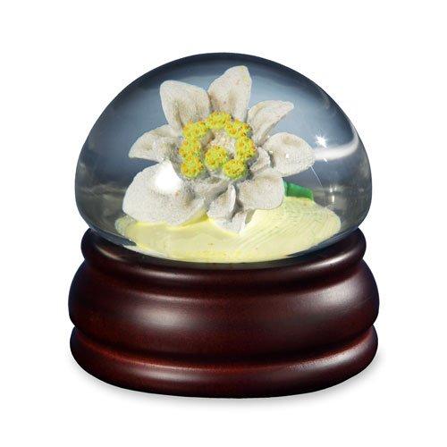 Edelweiss Mushroom Flower  Water Globe