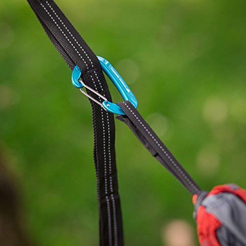 250 lbs Adjustable Hammock Tree Straps with No Stretch 2 Tree Straps Youphoria Hammock Straps for Tree Perfect Suspension Straps for Hammocks /& Camp Gear -Holds up to 500 lbs Youphoria Outdoors - 12 Loop Design