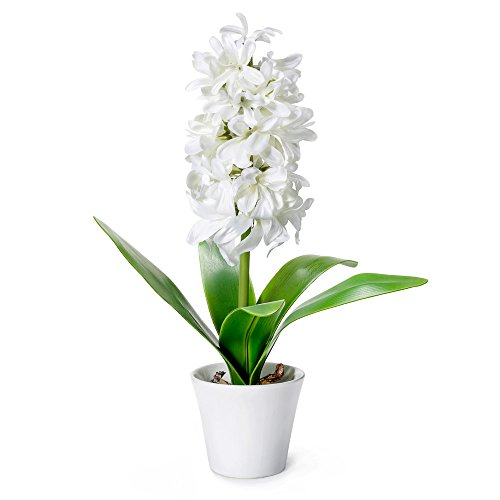 Ceramic Artificial Vases (Mkono Artificial Flowers with Vase Faux Silk Hyacinth Potted Plant Floral Arrangements for Home Kitchen Office Wedding Decor, 12 inches)