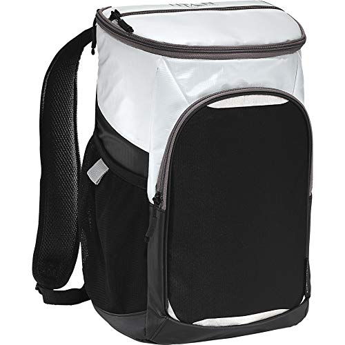 Artic Zone 53102900 Insulated Cooler Backpack