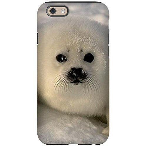 Compare Price To Baby Seal Cases Tragerlaw Biz