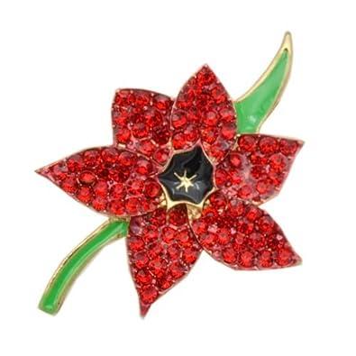 Shiny red poppy flower symbolic brooch coat poppies remembrance day shiny red poppy flower symbolic brooch coat poppies remembrance day pin br422 mightylinksfo