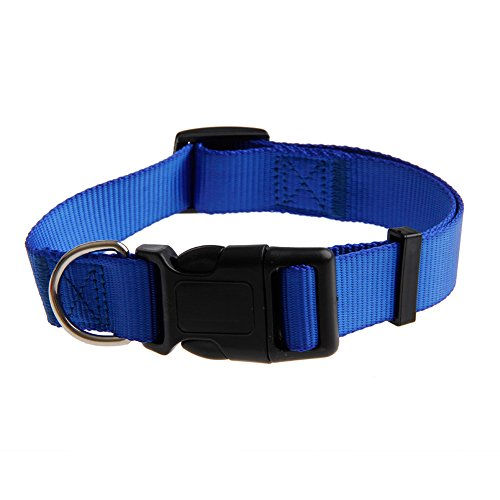 XUANS-SHOP-Cute-Pet-Puppy-Dog-Kitten-Cat-Nylon-Adjustable-Collar-Buckle-Neck-Strap-Blue