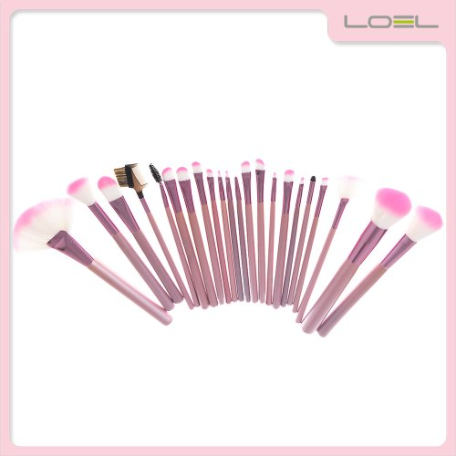 Loel Professional Portable 22 Pcs Make up Brush Cosmetic Set Premium Synthetic Hair with Case Pink