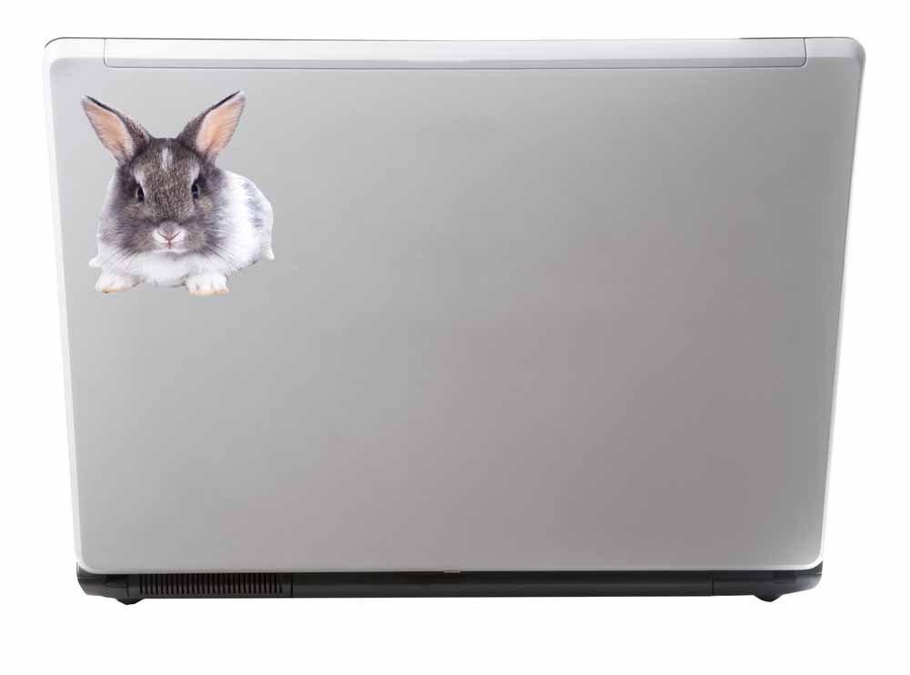 2 x 10cm//100mm Cute Rabbit Vinyl Sticker Decal Laptop Car Travel Luggage Label Tag #9798