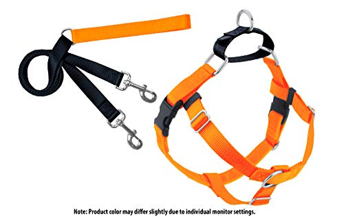 Hounds Orange (2 Hounds Design Freedom No-Pull Dog Harness and Leash, Adjustable Comfortable Control for Dog Walking, Made in USA (XLarge 1