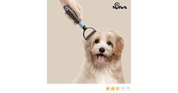 My Pet Ez Autum Brush Cepillo Cortanudos Para Mascotas, Cepillo para Perro: Amazon.es: Productos para mascotas