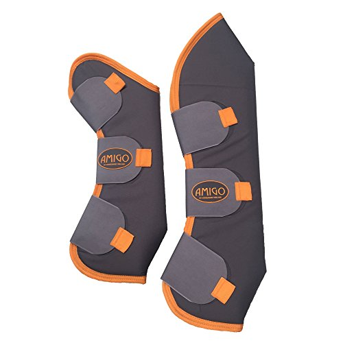 amiGO Travel Boots Horse Excalibur Orange