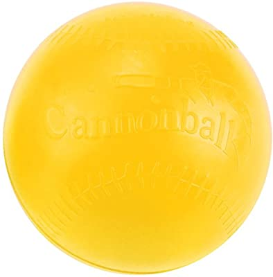 Markwort The Cannonball Weighted Ball