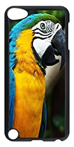iPod Touch 5 Cases & Covers -Colorful Parrot Custom PC Hard Case Cover for iPod Touch 5 ¨CTransparent