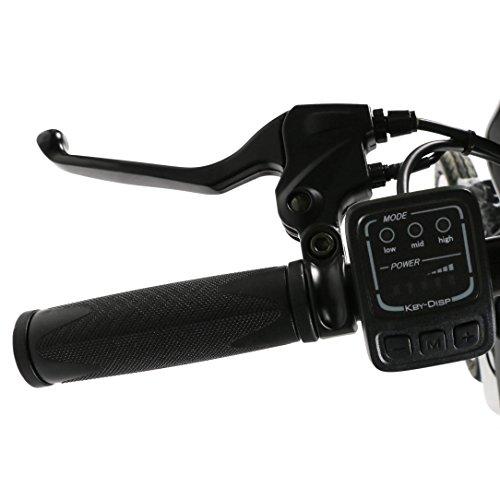 "eshion 14"" Folding 36V 250W Electric Bike E Bike Bicycle 440lbs Anti shock Unisex"