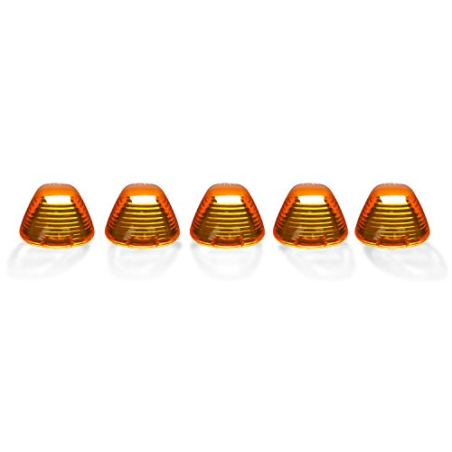 Recon (264142AM) Roof Light Lens ()