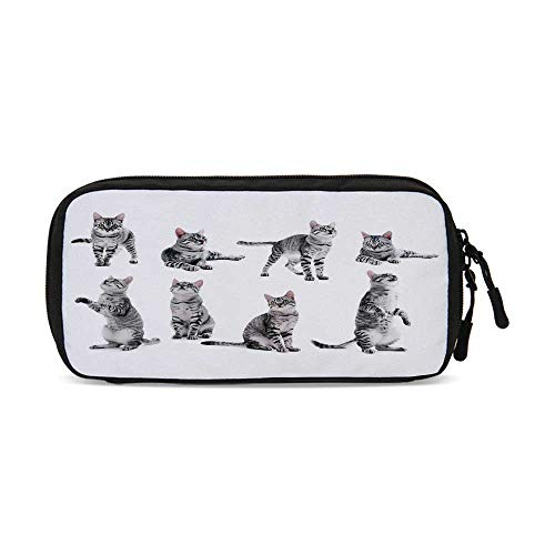 Cat Lover Decor Practical Data Storage Bag,Collage of a Cute Inquisitive Striped Shorthair Furry Playful Pussy Posing Art Print for Organizing Cables,One Size (Best Pussy On Net)