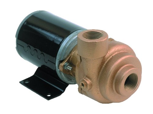 AMT Pump 4861-97 Marine Pump, Bronze, 1/8 HP, 12V DC TENV Marine Motor, 3/4 NPT Female Suction & Discharge Ports by AMT Pumps B0083846H4