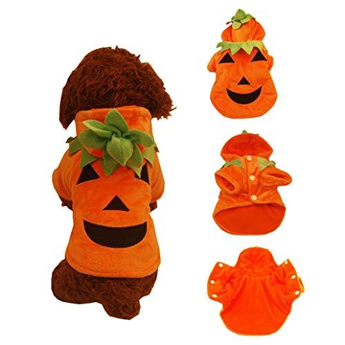 Anboo Pet Vest, Halloween Pumpkin Cool Cute Dog Pet Cosplay Costume Clothing Dog Funny Shirt T Shirt Black (XL, Orange)