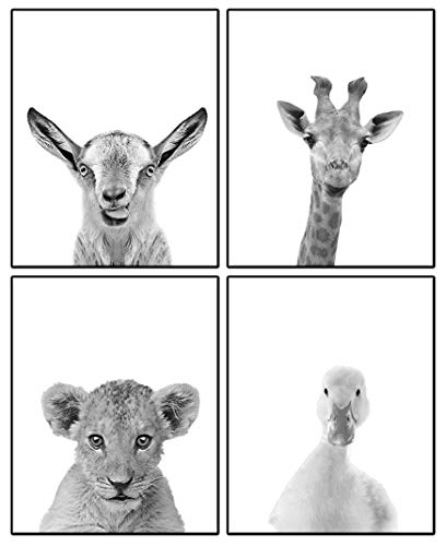 Baby Animals Nursery Wall Decor | Baby Room Decor Animal Nursery Pictures 8x10 | Cute Safari/Woodland/Farm Animal Baby Nursery Wall Art Prints| Set of 4 Prints for Baby Boys & Girls (Black & White)