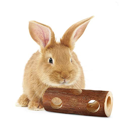 SunGrow Fresh Pine Chew Log for Rabbits by 100% Natural Biodegradable Lumber- Contemporary Textured Design - Provides Physical and Psychological Benefits