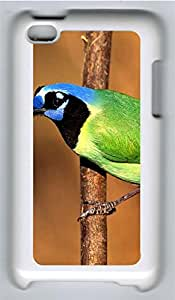 iPod 4 Cases & Covers - Blue Black Green Bird PC Custom Soft Case Cover Protector for iPod 4 - White