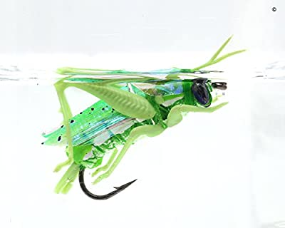 YZD Realistic Hopper Dry Fishing Flies Set of 6 Flies 3 sizes 5 Colors Fly Fishing Lure For Trout Pike Carp Flyfishing
