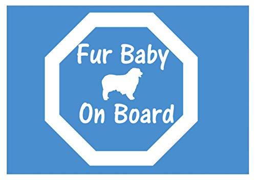 Australian Shepherd Fur Baby on Board 6