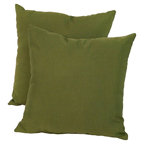 Greendale Home Fashions Indoor/Outdoor Accent Pillows, Summerside Green, Set of 2 (Green Outdoor Pillows compare prices)