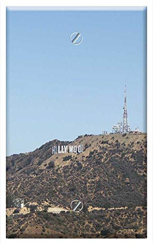 Single-Gang Blank Wall Plate Cover - Hollywood View Angeles City California -