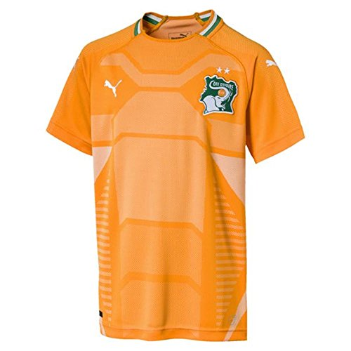 PUMA 2018-2019 Ivory Coast Home Football Soccer T-Shirt Jersey (Kids)