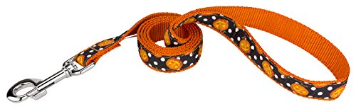Country Brook Design | 1 Inch Moonlight Grin Ribbon Dog Leash - 4 Foot