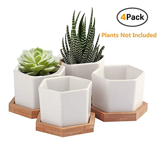 Succulent Planter,OAMCEG 2.75 Inch Succulent Plant Pots,Set of 4 White Ceramic Succulent Cactus Planter Pots with Bamboo Tray (Plants NOT Included)
