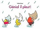"""Afficher """"Génial il pleut !"""""""