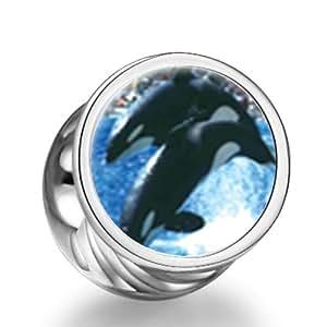 Killer Whale anuncios cilíndrica Photo cuentas para pulsera