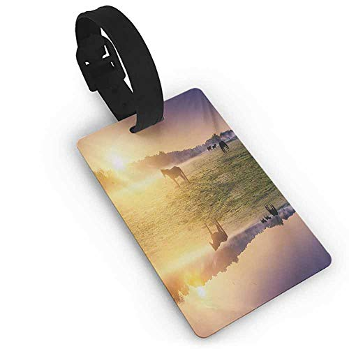 Baggage Tag Nature,Horse Valley in South with a Lake Reflection and Sun Rising Above Mountains Print,Multicolor Label Tag Address ()