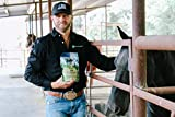 LCR    Equine Ulcer Healing  Supports a Horses