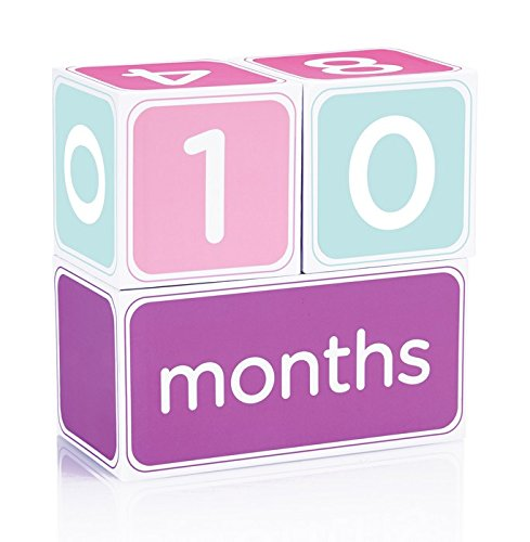 (Pearhead Baby Age Photo Sharing Blocks, Pink)