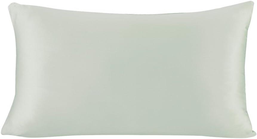 LilySilk 4101-10-SNPW Terse Silk Pillowcase Zipper 19 mm Standard Pale Turquoise
