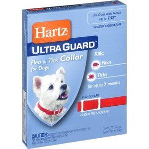 Hartz UltraGuard Flea and Tick Dog Collar (Pack of 6)