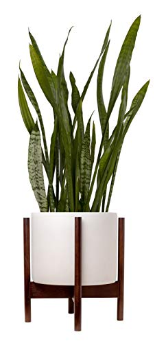 Indoor Planter Large 9 Pot for Plants with Mid Century Modern Wooden Stand Concrete Cachepot with Ceramic-Like Finish