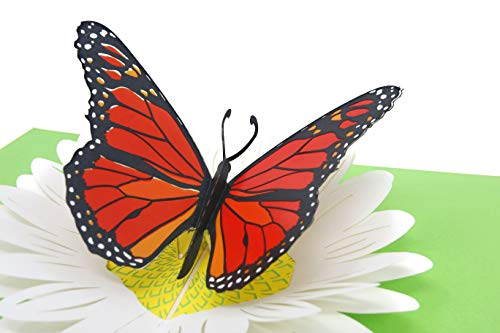 (PopLife Orange Monarch Butterfly on Daisy 3D Pop Up Mother's Day Card - Anniversary Pop Up for Mom, Happy Birthday - Cute Gift for Her - Folds Flat - for Sister, for Daughter, for Wife, for Grandma)