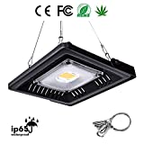 Cheap LED Plant Grow Light, YILUREN 100W Sunlight Waterproof Full Spectrum COB LED Grow Lamp for Indoor or Outdoor Plants Vegetables and Flower, Natural Heat Dissipation and Without Noise