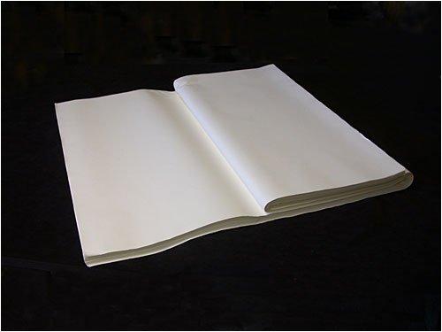 Best Shuen 100 Sheet Pack: 100 Individual Sheets by China Ke