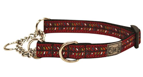 RC Pet Products 1-Inch Training Martingale Dog Collar, X-Large, Bracken