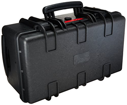(AmazonBasics Large Hard Rolling Camera Case - 22 x 14 x 9 Inches, Black)
