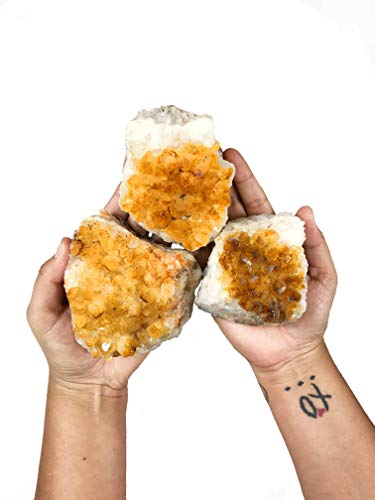 Rock Paradise 1 (One) Citrine Cluster - Citrine Cluster 0.5-1 lb Power Stone Exclusive COA (AMC1A)