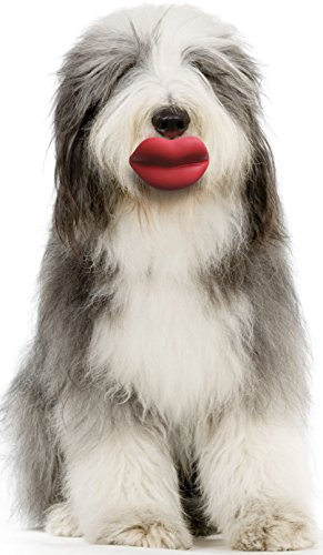 Moody Pet Humunga Lips Large for Large - XLarge (Lip Mop)