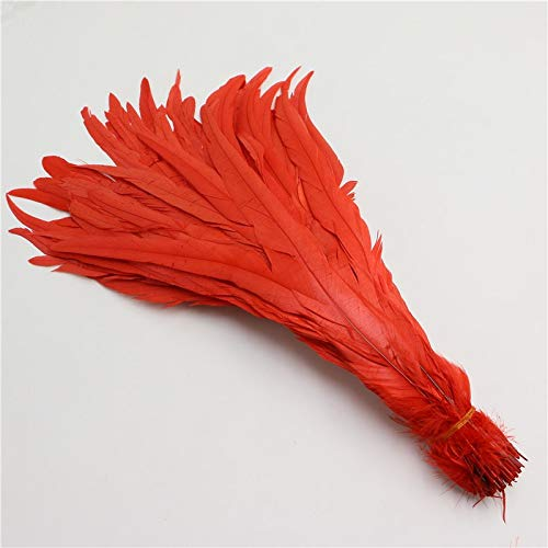Pukido 35-40cm/14-16inch Badger Saddle Rooster Tail Feathers red Color conque Chicken Feather for Party Christmas Wedding Decoration by Pukido (Image #2)