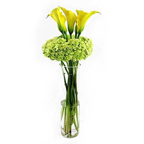 Elegant Vases - 6