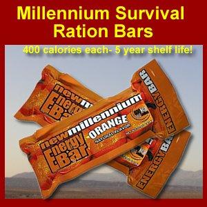 New millennium survival emergency ration food bar for Food bar orange